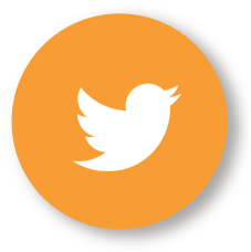 Twitter_Maroon Oak