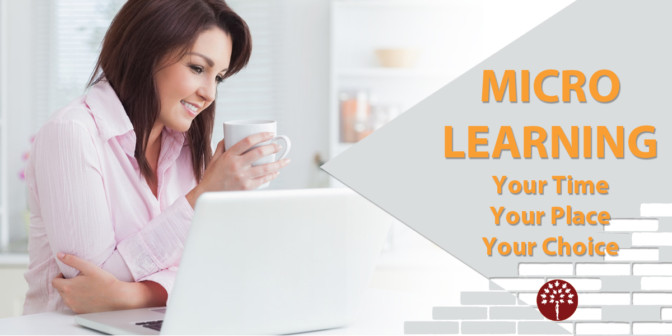 Micro Learning - Your Time, Your Place, Your Choice