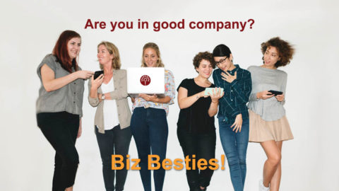 Biz besties are your ally, champion, spokesperson, supporter and more... Even if the relationship is not formal, it can be very rewarding for your business in so many ways. Learn the secrets - why business besties are the best investment for an entrepreneur
