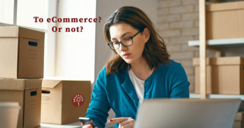 Starting an eCommerce business? Answer these 6 questions first